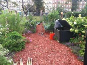 Mikael's garden
